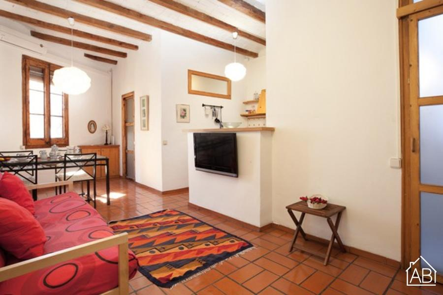 AB Gracia Apartment - Charming two-bedroom apartment in Gràcia - AB Apartment Barcelona
