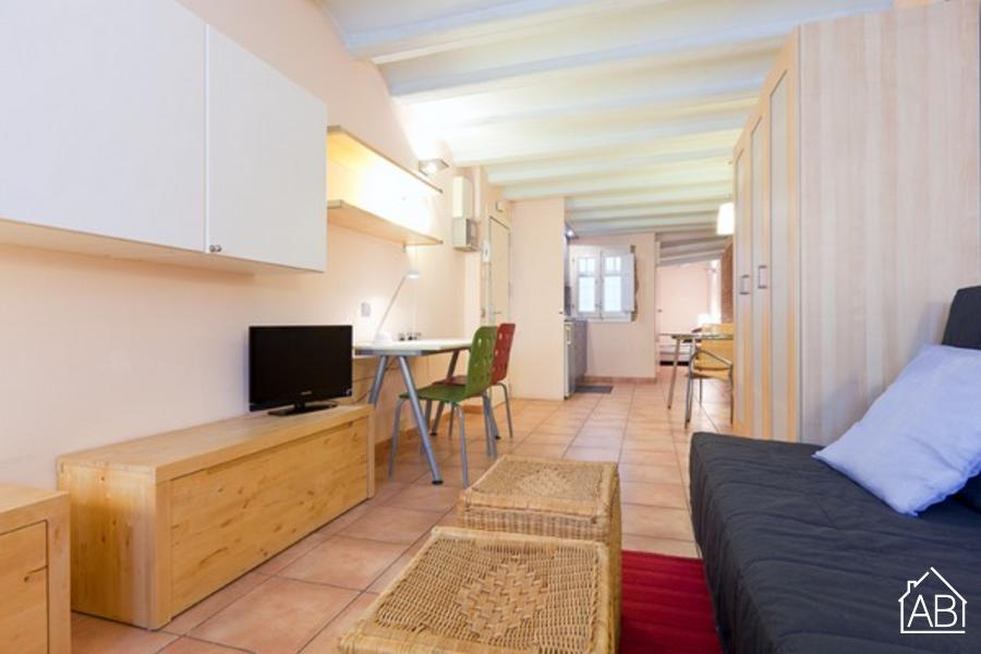 AB Estación de Francia Apartment - Уютная квартира в Ла Рибера - AB Apartment Barcelona