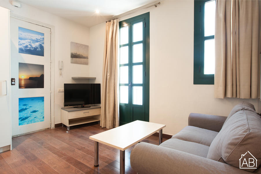 AB Apartment Paseo del Born - Chic and Cosy 2-bedroom Apartment in El Born - AB Apartment Barcelona