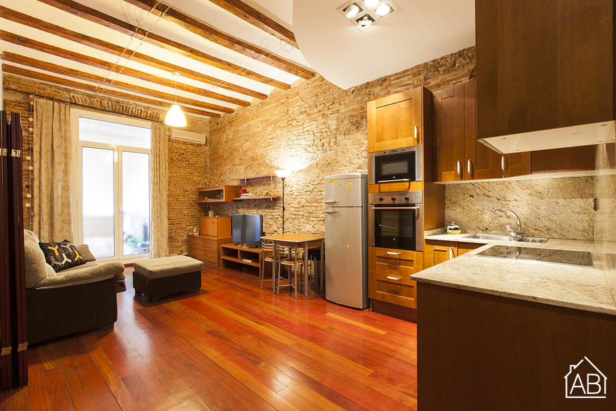 AB La Paloma Apartment - Central, rustic style apartment located near Plaça Universitat - AB Apartment Barcelona