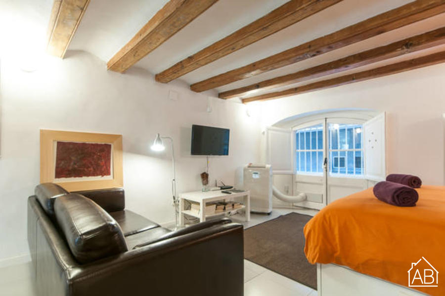 The Plaça Catalunya Tallers Apartment - Centrally located studio apartment near Plaça CatalunyaAB Apartment Barcelona -