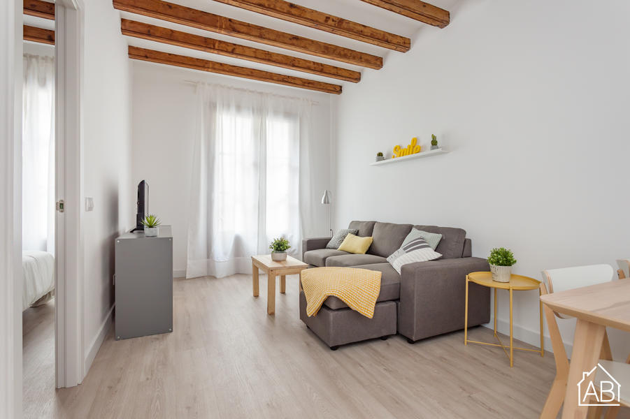 AB Premium Old Town - Spacious and modern two bedroom apartment in the heart of the Gothic Quarter - AB Apartment Barcelona
