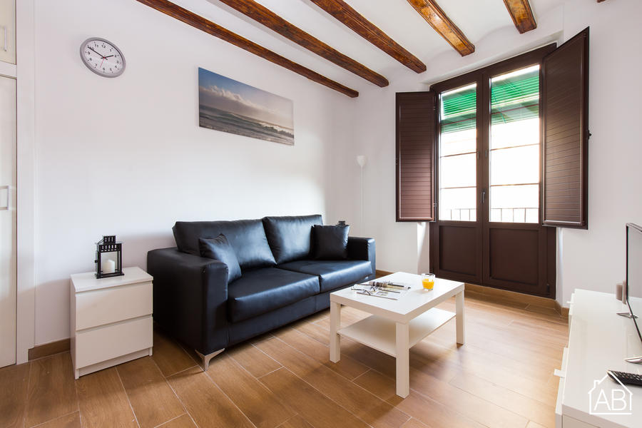 AB Banys Vells - Homely and Spacious Two Bedroom Apartment in Heart of El Born District  - AB Apartment Barcelona