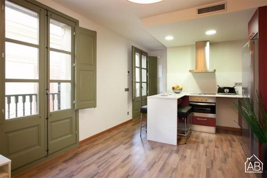 AB Nou de Sant Francesc II - Spacious apartment found near Las Ramblas with balcony - AB Apartment Barcelona