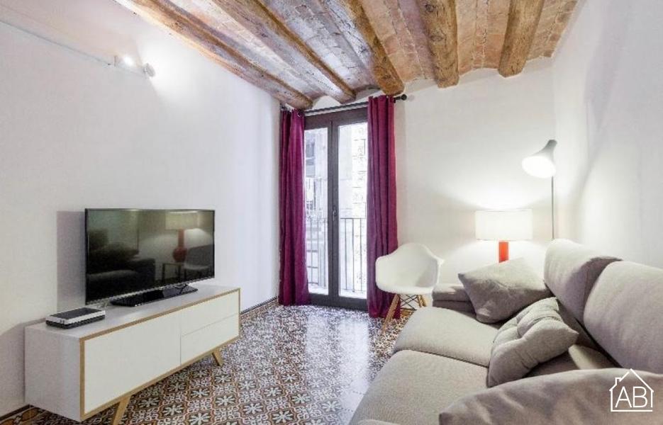 ENCANTADORA VIVIENDA A LA VENTA EN EL GÓTICO -  - AB Apartment Barcelona