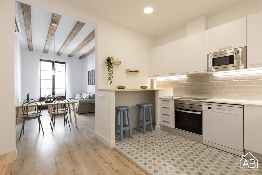 AB Joaquim Costa - Stylish Three Bedroom Apartment in El Raval Next to MACBA Museum - AB Apartment Barcelona