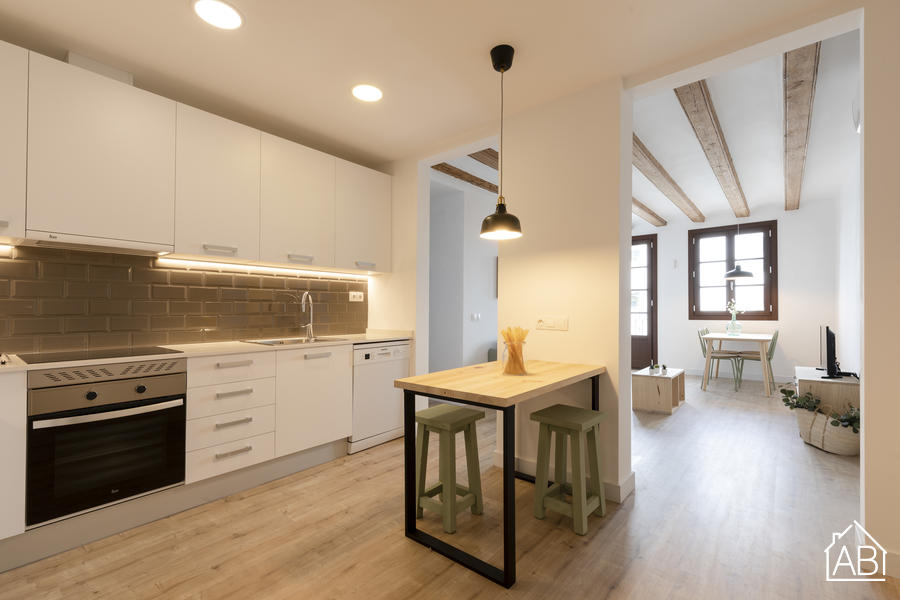 AB Joaquim Costa - Stylish Two Bedroom Apartment in El Raval Next to MACBA Museum - AB Apartment Barcelona