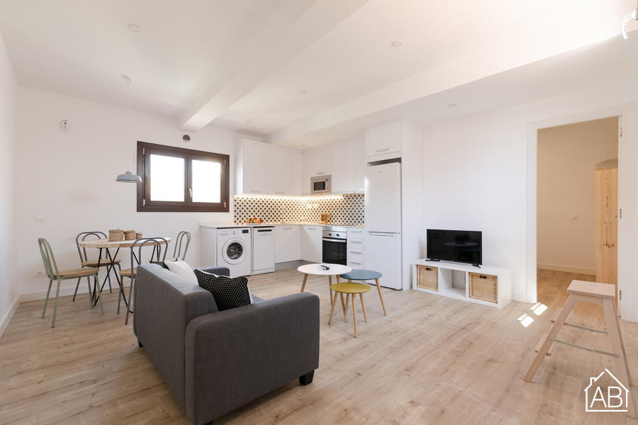 AB Joaquim Costa Penthouse ONE - Gorgeous One Bedroom Penthouse Apartment in El Raval Next to MACBA Museum - AB Apartment Barcelona