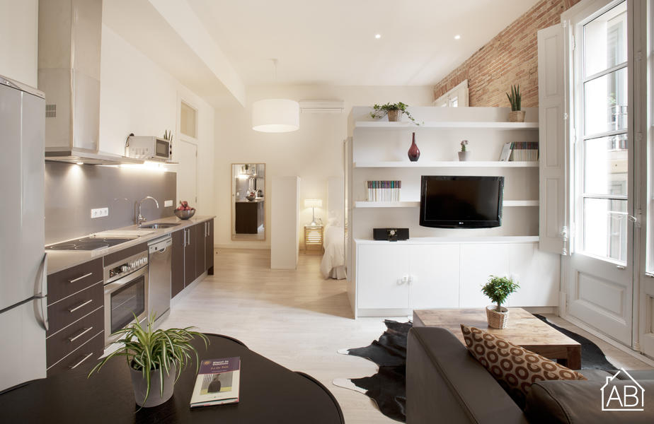 Gotic Boutic 2 - Recently refurbished stylish one bedroom studio apartment in the Gothic Quarter - AB Apartment Barcelona