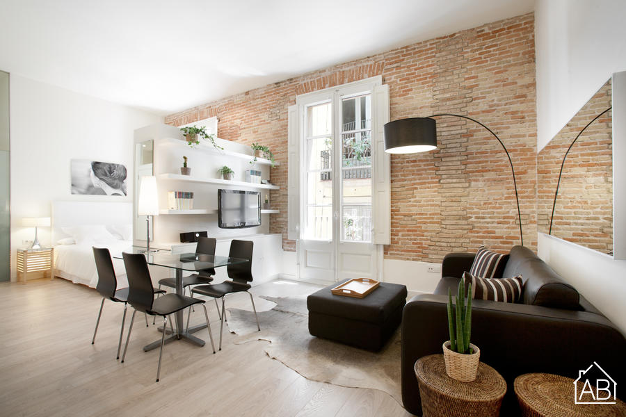 Gotic Boutic 3 - Contemporary one bedroom studio apartment in the Gothic QuarterAB Apartment Barcelona -
