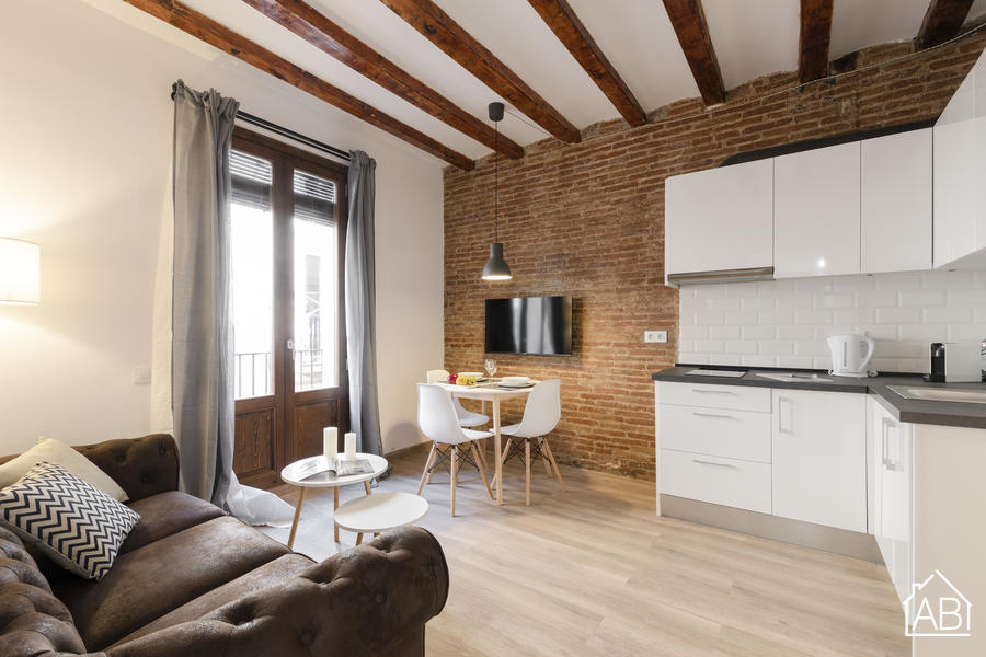 AB CENTRIC APARTMENTS VI - Wonderful two bedroom apartment with a balcony near Las RamblasAB Apartment Barcelona -