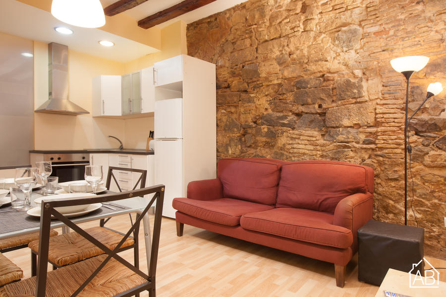 Ramblas building Groundfloor - Basic 2-bedroom Apartment near Las Ramblas - AB Apartment Barcelona